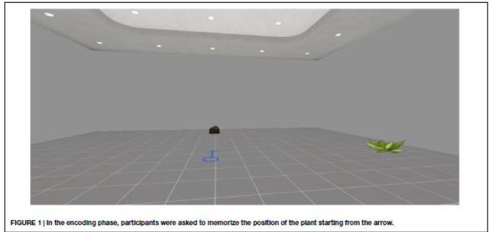 Ilustración 3: Screening de déficits de orientación por medio de la RV6